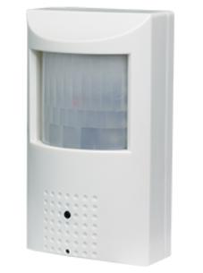 1080p (1920 x 1080) SDI Indoor Covert Motion Camera