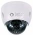 Indoor-Outdoor IP Dome Camera - 12x Optical Zoom