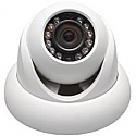 Mavlon Indoor-Outdoor IP Dome Camera - 1.3 Megapixel
