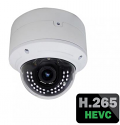 5MP IP Dome Camera